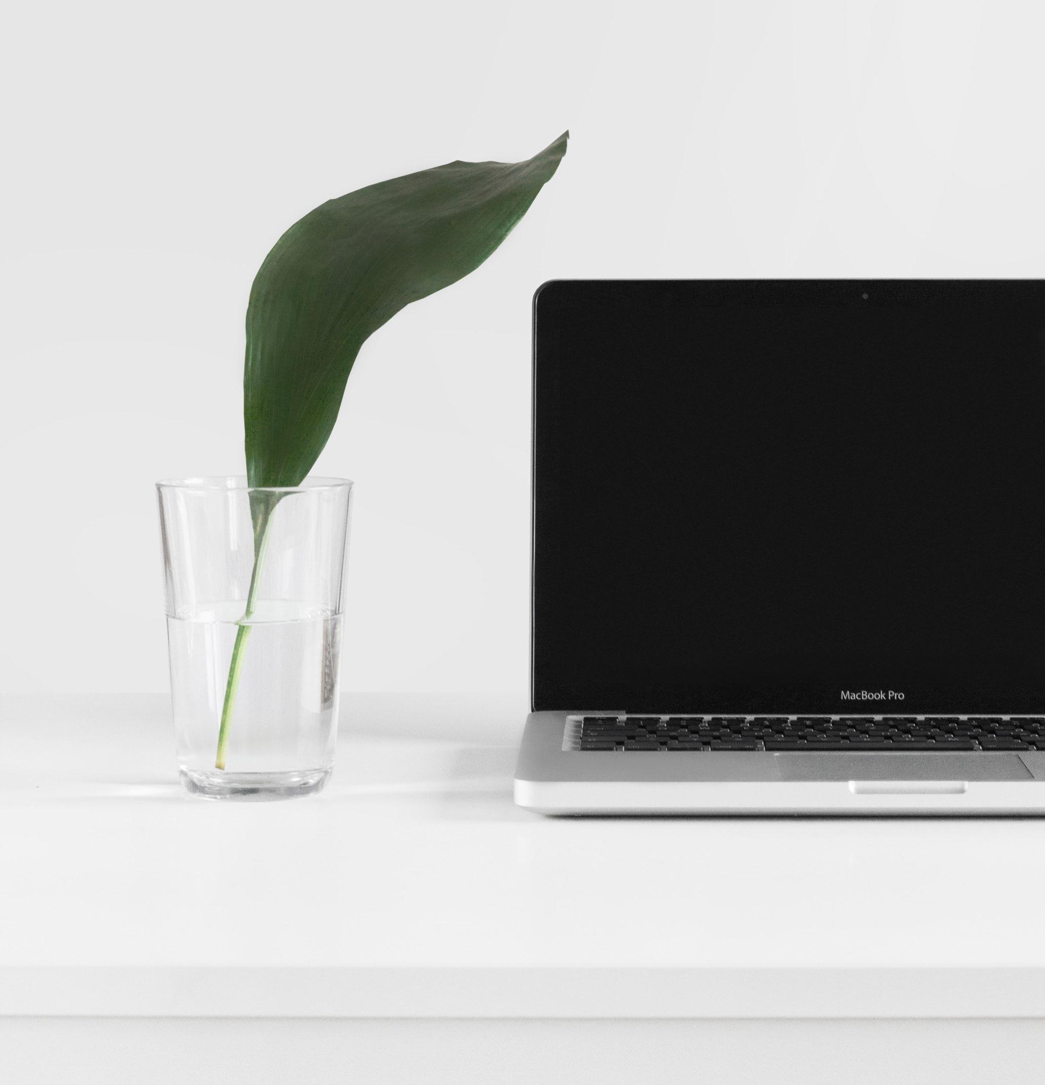 laptop-services